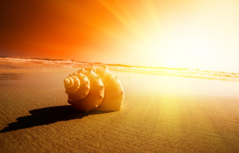 Фото обои песок, закат, Море