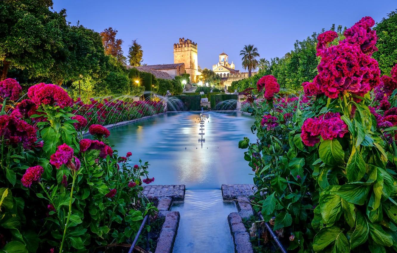 Фото обои цветы, сад, фонтан, крепость, Испания, Spain, Андалусия, Кордова, Cordoba, Алькасар-де-лос-Рейес-Кристианос, Alcázar de los Reyes Cristianos, …