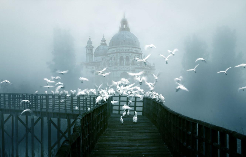 Обои туман. Города foto 8