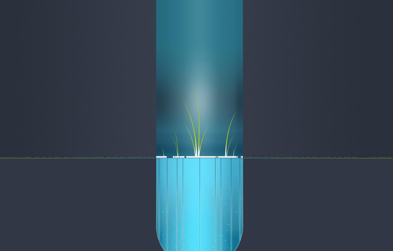 Фото обои ростки, минимализм, Вектор