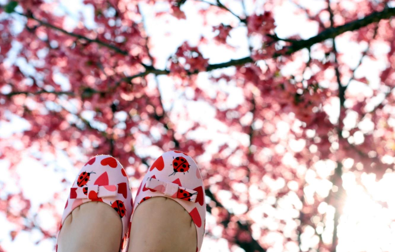Фото обои настроение, весна, сад, сапожки