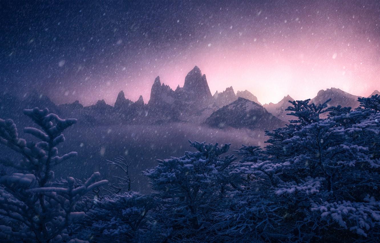 Фото обои зима, снег, деревья, горы, Argentina, Аргентина, Анды, Patagonia, Патагония, Andes, Monte Fitz Roy, гора Фицрой