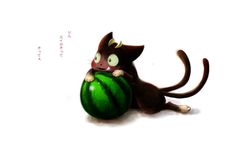 Фото обои кот, аниме, арбуз, арт, Ao no Exorcist, Синий экзорцист, Blue Exorcist, Kuro