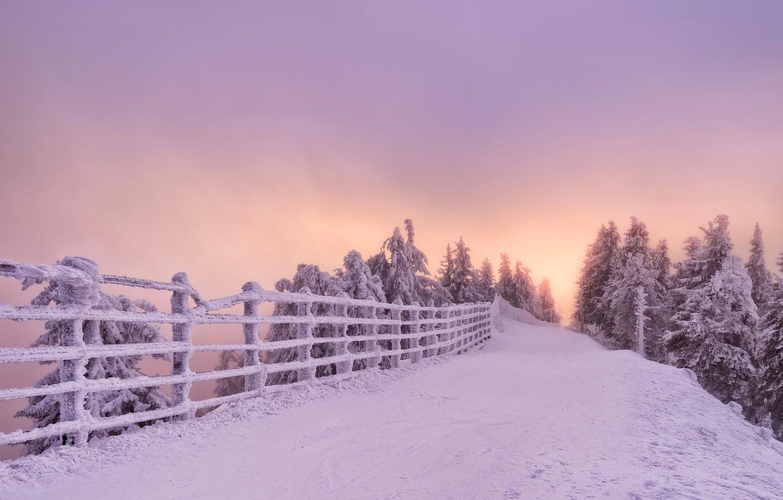 Фото обои зима, дорога, снег, деревья, закат, забор, Romania, Румыния, Brasov, Брашов