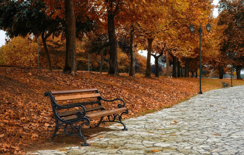 Картинки осень золотая скамья
