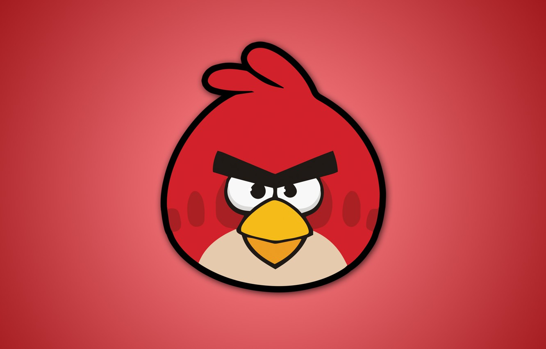 Фото обои птицы, red, angry birds, злые птицы, видеоигры, энгри бердс