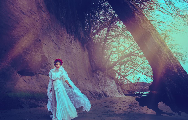 Фото обои девушка, дерево, платье, Stephanie Miller