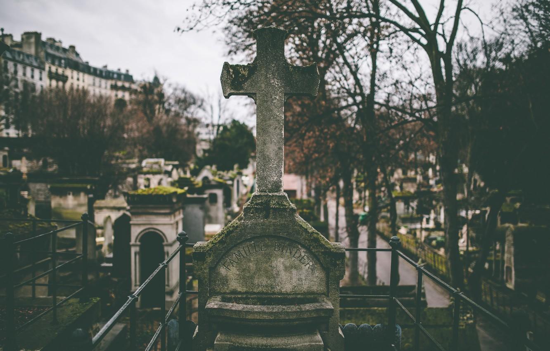 Фото обои деревья, смерть, ветви, могилы, крест, кладбище, слизь