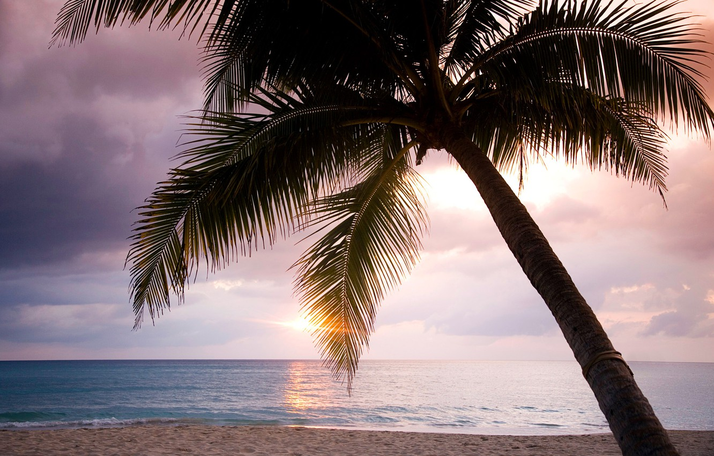 Красивые закаты и рассветы на море фото