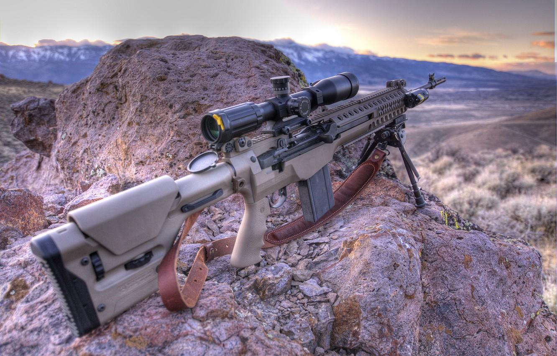 Фото обои винтовка, M1A, Troy, M14, MCS