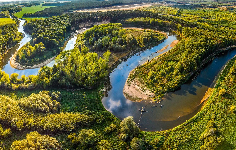 Фото обои зелень, лето, солнце, деревья, река, поля, Чехия, панорама, леса, Morava, Straznice