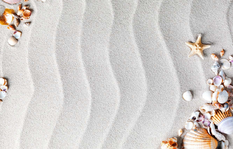 Фото обои песок, пляж, ракушки, sand, starfish, seashells