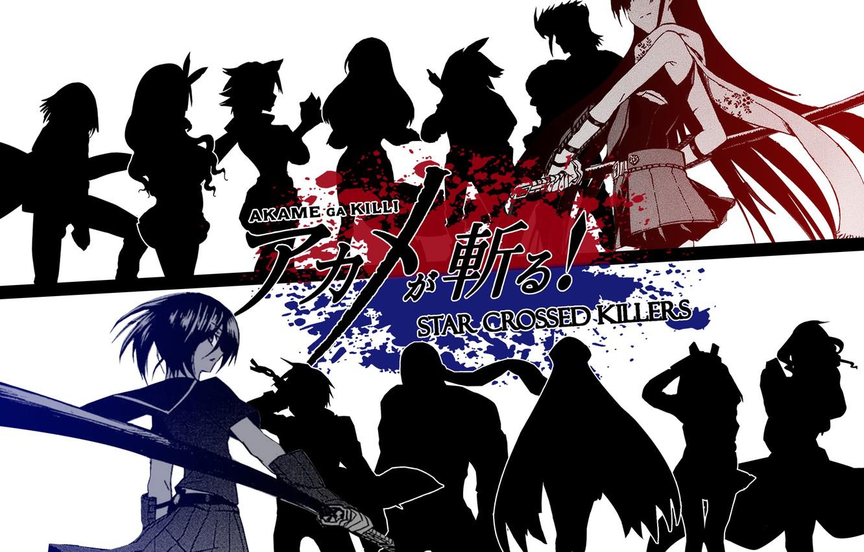 Фото обои anime, Akame, Akame Ga Kill, ongoing2014.