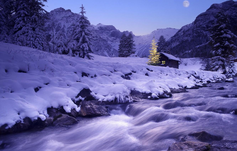 Фото обои зима, снег, река, елка