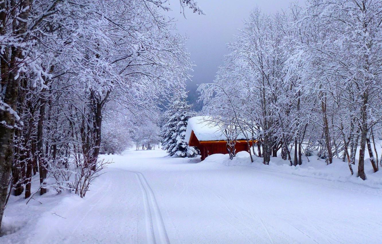 Фото обои зима, дорога, лес, небо, снег, пейзаж, природа, дом, house, white, forest, road, sky, landscape, nature, …
