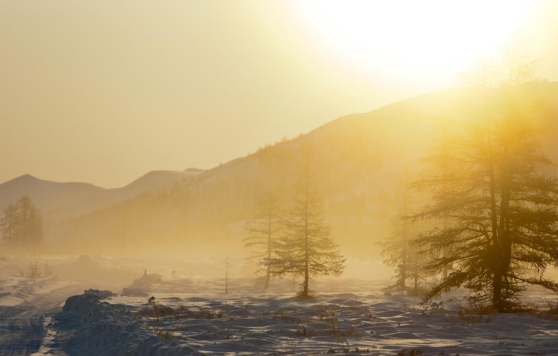 Фото обои снег, деревья, пейзаж, горы, природа, туман