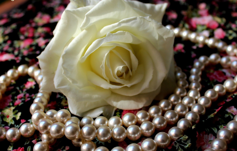 Красивые цветы мерцающие картинки с драгоценностями