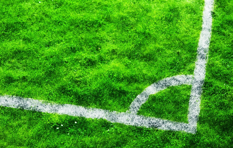 Фото обои поле, трава, 149, Угол