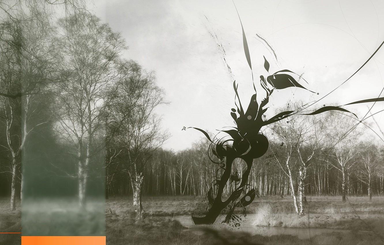 Фото обои деревья, клякса, Обработка