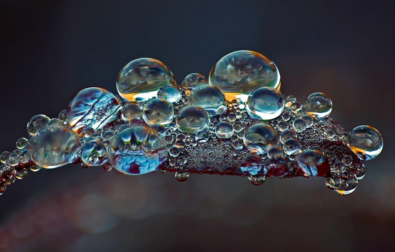 красивые фото макросъемки воды мужчины