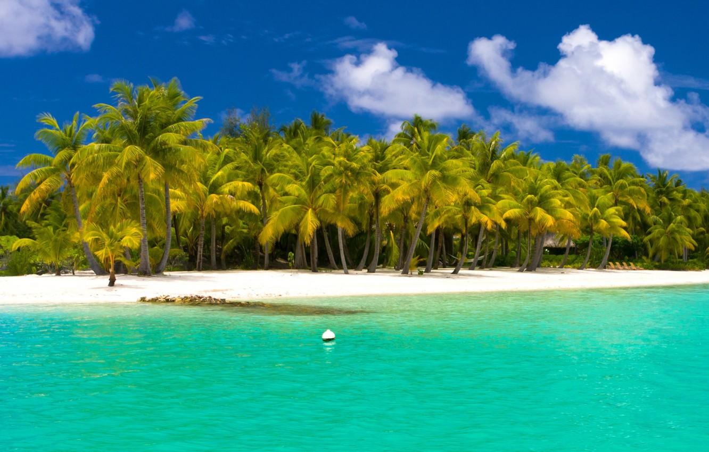 Фото обои пляж, пальмы, океан, курорт, белый песок, fantastic Maldives