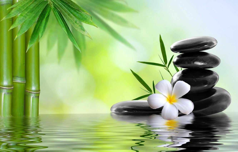 Обои Spa, цветы, spa stones, орхидеи, Вода, Спа камешки. Разное foto 18