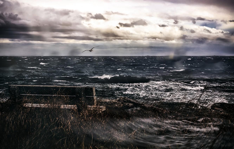 пасмурное море фото того, фотография