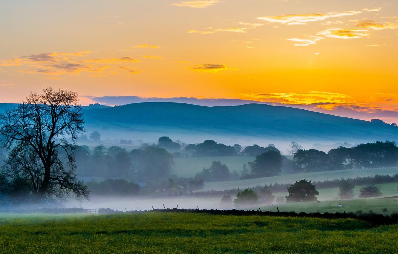 Фото обои поле, небо, деревья, закат, горы, туман, холмы