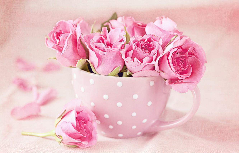 Фото обои розы, букет, чашка, pink, cup, roses