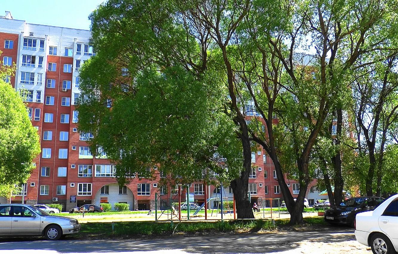 Фото обои дом, весна, Улица, двор