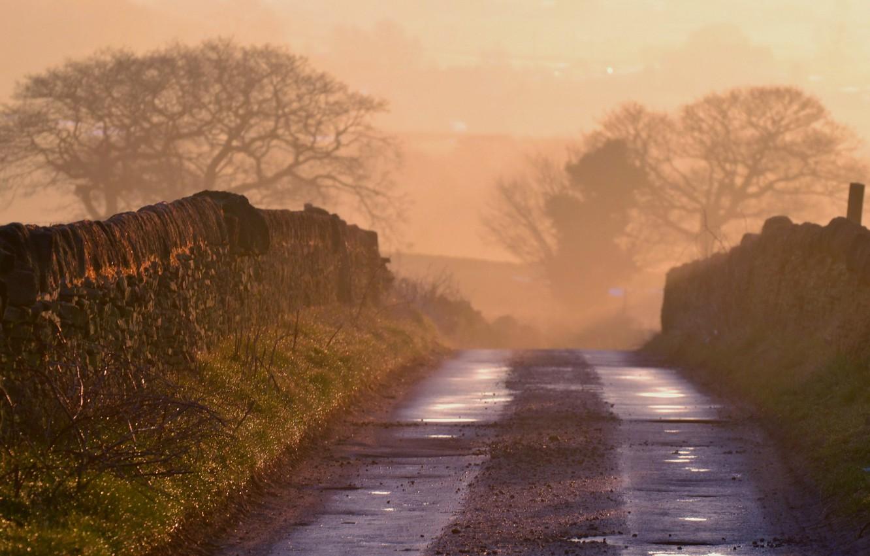 Фото обои дорога, пейзаж, туман, утро