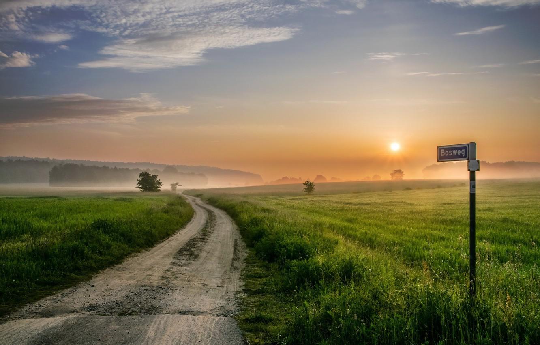 Фото обои дорога, поле, закат, туман, знак