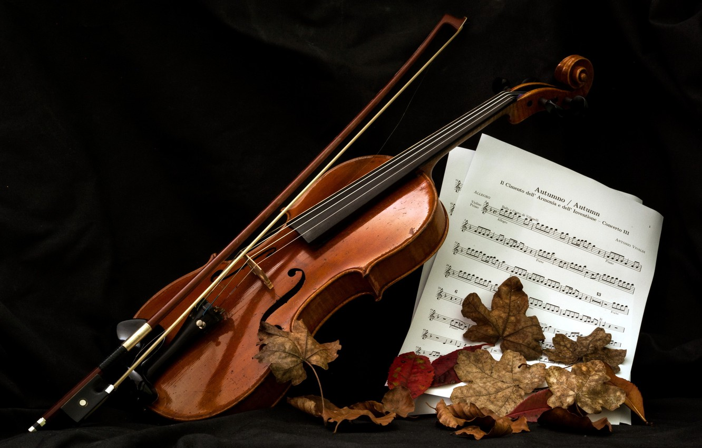 Фото обои ноты, музыка, скрипка
