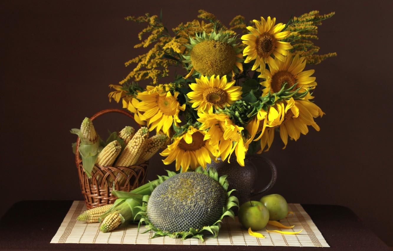 Фото обои подсолнухи, яблоки, кукуруза, натюрморт, семечки