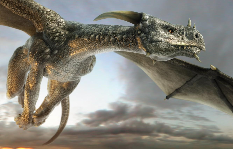 Фото обои небо, взгляд, морда, облака, полет, дракон, крылья, арт, рога