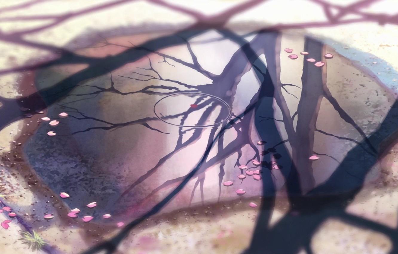 Фото обои отражение, 5 сантиметров в секунду, Макото Синкай, листья сакуры.