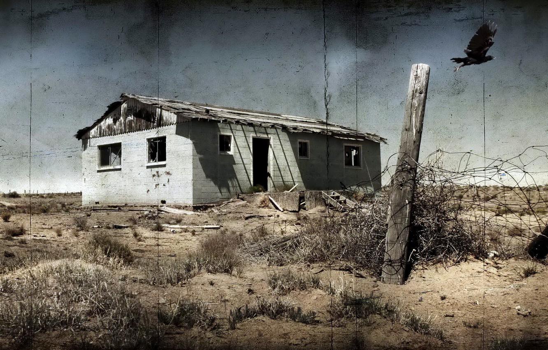 Фото обои пейзаж, дом, стиль, птица