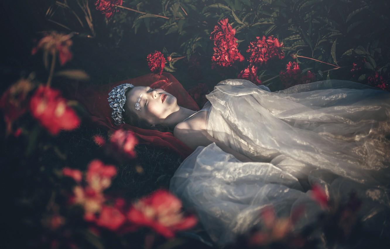 Сон в котором дарят розовые цветы
