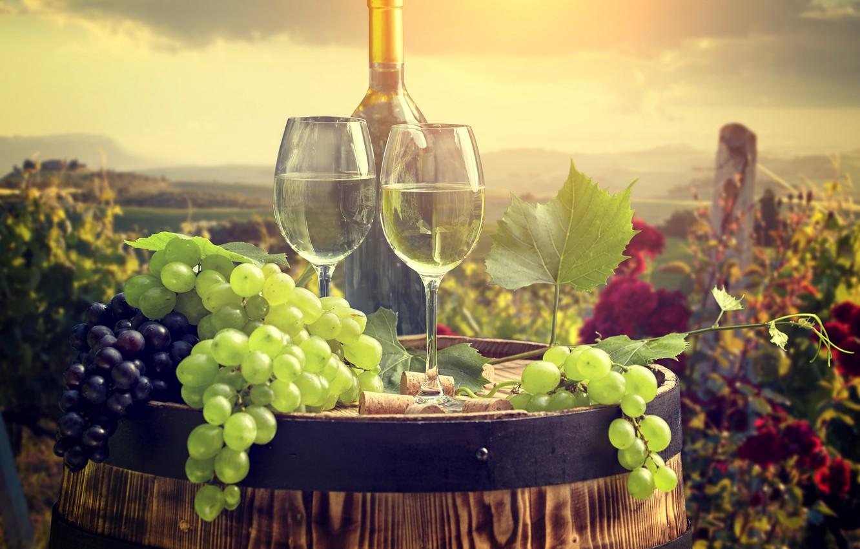 Обои Бутылки, бочки, виноградники, виноград, вино. Разное foto 11