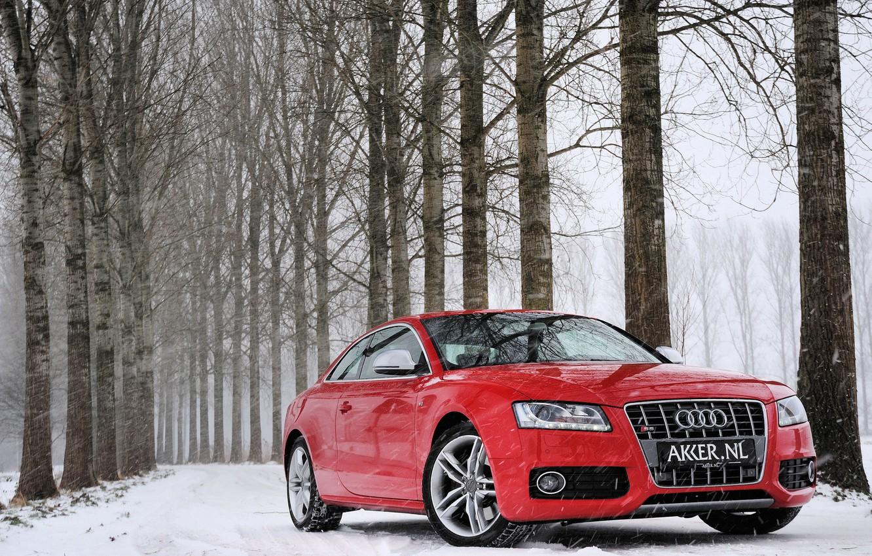 Фото обои зима, лес, снег, деревья, красный, Audi, Ауди, red