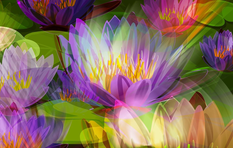 Фото обои цветы, рисунок, лепестки, луг, лотос, тычинки, клумба