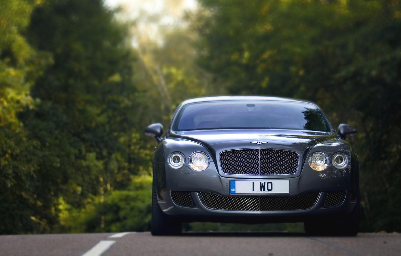 Фото обои Авто, Bentley, Continental, Лес, решетка, Машина, Лого, Серый, Фары, Автомобиль