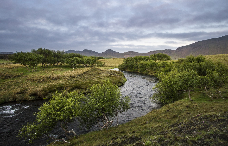 Фото обои лето, деревья, река, холмы, Næfurholt, Южная Исландия
