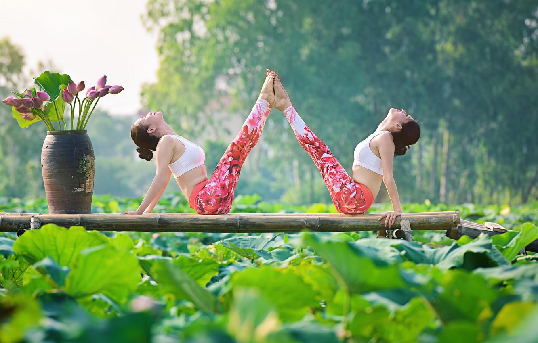 Фото обои лето, цветы, природа, девушки, концентрация, гимнастика, йога, азиатки