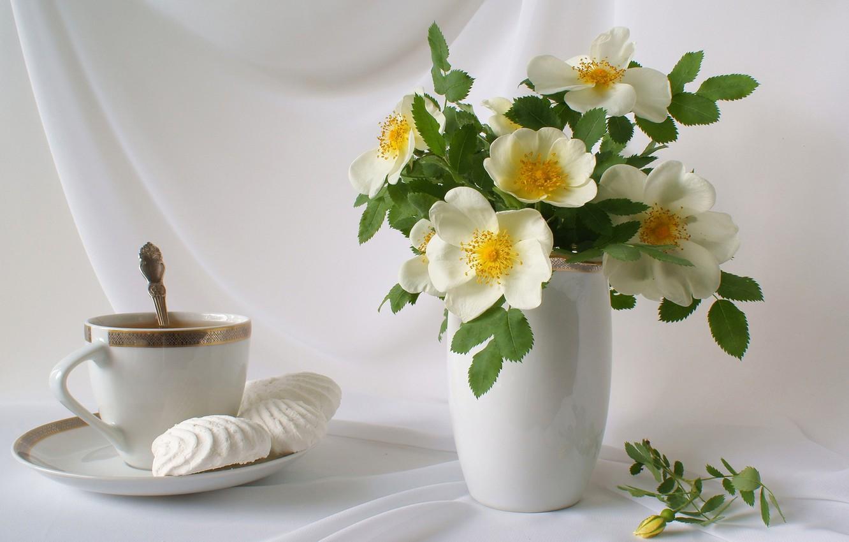 Обои цветы, чай, натюрморт. Разное foto 7