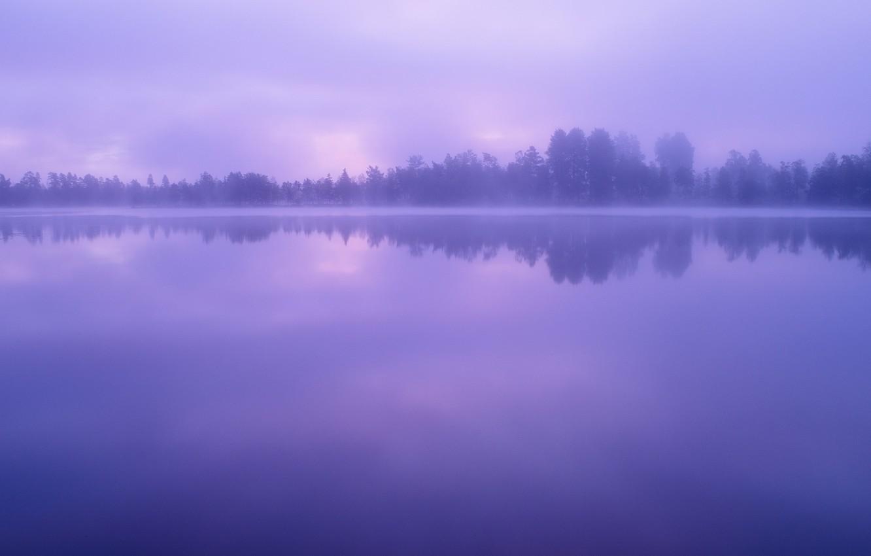 Фото обои Небо, Вода, Облака, Озеро, Деревья, Лес