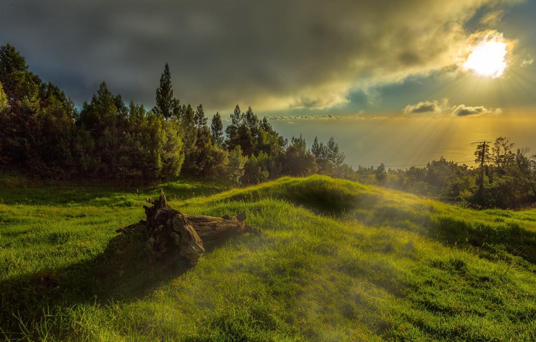Фото обои свет, утро, Reunion, Arrondissement of Saint-Denis, Saint-Denis