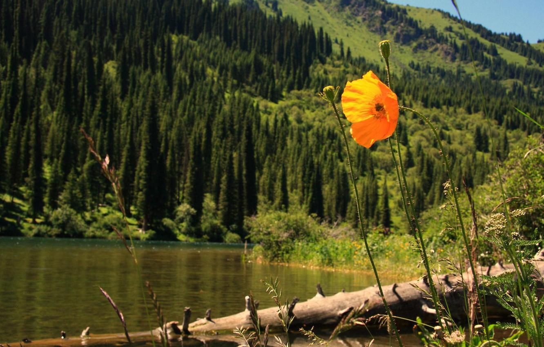 Фото обои Казахстан, Алма-ата, Озеро Кольсай
