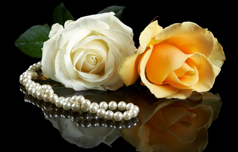 Фото обои белый, цветы, желтый, фон, черный, розы, жемчуг, парочка