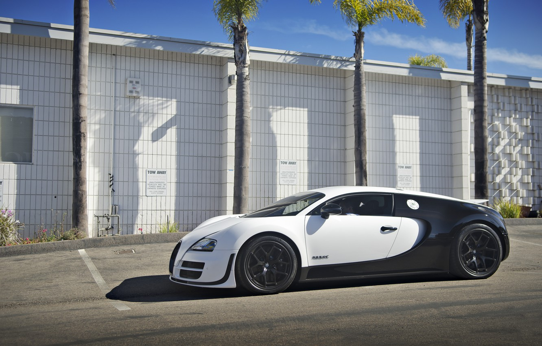Фото обои Bugatti, Veyron, Super, Sport, Price, Blanc, Pur